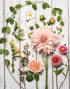 """As featured in Victoria Magazine: Use these flower """"ingredients"""" to create your own stunning floral arrangement. #growfloret"""