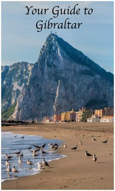Things to Do and See in Gibraltar, Your Guide to Gibraltar Holidays Budapest, Rock Of Gibraltar, Holland America Cruises, Stuff To Do, Things To Do, Cruise Ship Reviews, British Overseas Territories, Spain And Portugal