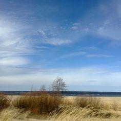 Kalajoki / Suomi / Finland / maisema / landscape photo by Minna Saarela Birches, Helsinki, Landscape Photos, Seas, Finland, Mythology, Landscapes, Clouds, Places