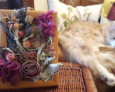 Connect to nature through dried flower art by afloristsdaughter How To Preserve Flowers, Dried Flowers, Flower Art, Floral Arrangements, Etsy Seller, Lily, Outdoors, Handmade Gifts, Kid Craft Gifts