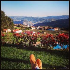 #tbt #férias #douro #valedodouro #farniente #provesende by crd8584 Douro Valley, Five Star Hotel, Dolores Park, Old Things, Landscape, World, Nature, Travel, Vintage