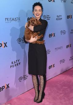 Katy Perry puts on a show in sexy dress and boots at movie screening #dailymail