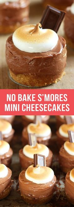 No-Bake S'mores Mini Cheesecakes - Handle the Heat