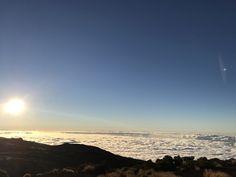 Sunshine ❤️ Tenerife 😍