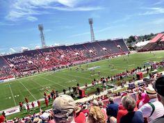 University of South Alabama Jaguars Football