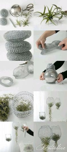 DIY air plant decorations made from metal dish scrubbies! The original post ha. DIY air plant decorations made from metal dish scrubbies! The original post has been taken down, unfortunately, but I've linked the site. Diy Crafts Videos, Diy Crafts To Sell, Diy Crafts For Kids, Home Crafts, Decor Crafts, Diy Garden Decor, Diy Room Decor, Garden Ideas, Dulux Valentine