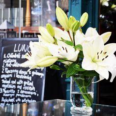 БЛОГИНГ | ПРОДВИЖЕНИЕ БЛОГА в Instagram: «Мой субботний день начался с зарядки, откисания в ванне и полезного завтрака. А эти лилии в заведении Scandalе Royal сделали мой день. Они…» Table Decorations, Plants, Furniture, Home Decor, Decoration Home, Room Decor, Home Furnishings, Plant, Home Interior Design