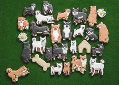全世界の「柴犬ファン」のみなさまへ かわいすぎて食べられない!? 柴犬のアイシングクッキー…