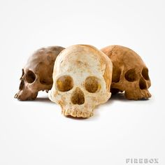 It wouldn't be Christmas with out these decadent Chocolate Skulls.