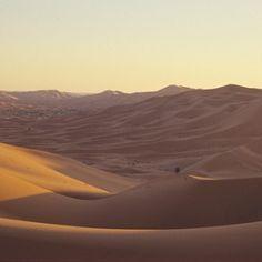 Camel trekking through the Moroccan desert