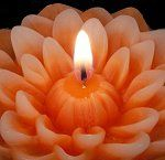 Dahlias floating candles