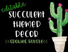 Succulent-Themed Decor - Growing Bundle!