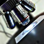Immunonkológia Personal Care, Beauty, Self Care, Personal Hygiene, Beauty Illustration