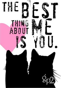 Cat Love Kitty Cat Print Series by GoingPlaces2 on Etsy, $14.00