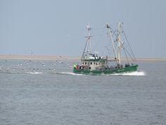 Krabbenfischkutter