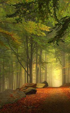 Fairytale Landscape by Kilian Schönberger