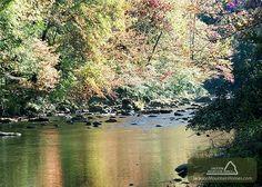 Cool River Breeze Cabin