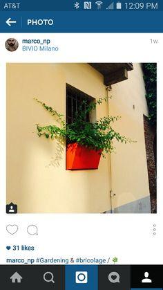 Window box detail in Milan