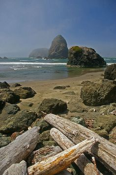 Whale Head rock on the rugged southern Oregon coast