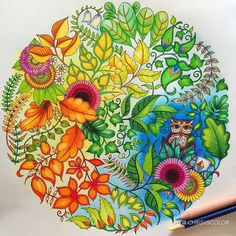 Another work done from #JohannaBasford #EnchantedForest #ColoringBook using #Muji #無印良品 and #FaberCastell Art Grip Aquarelle color pencils