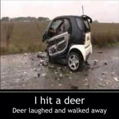 Random Funny Pictures – 37 Pics