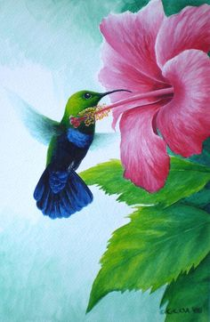 Hummingbird Feeder Discover Green-throated Carib and pink hibiscus by Christopher Cox Green-throated Carib Hummingbird Painting - Green-throated Carib And Pink Hibiscus by Christopher Cox Bird Painting Acrylic, Hummingbird Painting, Watercolor Art, Pretty Birds, Beautiful Birds, Illustration Au Crayon, Hummingbird Pictures, Bird Drawings, Flower Art