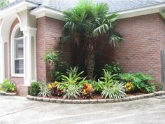 like this corner landscape. Obviously the palm tree would need to be replaced