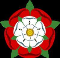 la rosa de diez pétalos: la rosa tudor