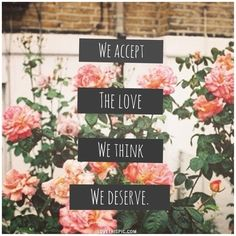 we accept the love love quotes flowers truth love quote relationship quotes quotes for love pink flowers
