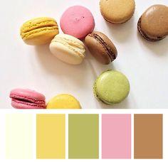 Macaron Palette