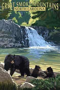 Great Smoky Mountains, North Carolina - Falls -  Lantern Press Poster