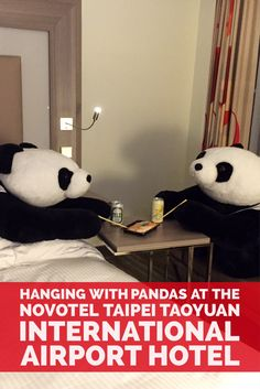 Hanging with Pandas at the Novotel Taipei Taoyuan International Airport Hotel…