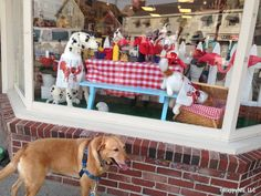 Dog-friendly Kennebunkport