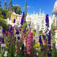 #disneyland #itsasmallworld #fantasyland #flowers #bluesky #springtime #disney @disneyland by mousekateer_megan