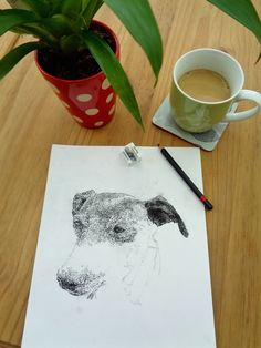 My portrait of the very sweet Merry Legs is nearly finished! #petportraits #dogportraits #dogdrawings