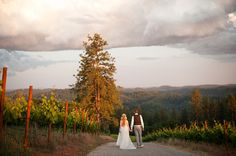 Bride and Groom at Lucchesi Vineyards, Grass Valley, California, photography by Acres of Hope Photography