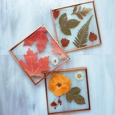 Fall Leaf Glass Coaster Leaf Crafts, Flower Crafts, Fall Crafts, Arts And Crafts, Diy Resin Art, Diy Resin Crafts, Diy Resin Tutorial, Autumn Leaves Craft, Botanical Decor