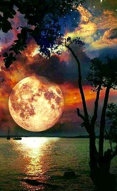 Photography Discover Natural landscape at night. Beautiful World Beautiful Places Beautiful Scenery Beautiful Sunset Amazing Places Shoot The Moon Amazing Nature Night Skies Sky Night Shoot The Moon, Moon Art, Amazing Nature, Night Skies, Sky Night, Good Night Moon, Cold Night, Belle Photo, Pretty Pictures