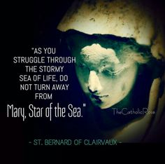 St. Bernard of Clairvaux - Mary, Star of the Sea
