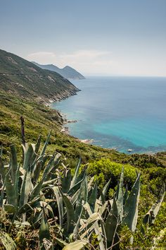 Côte Ouest du Cap Corse, Corsica, France