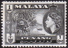 Malay State of Penang 1957 Queen Elizabeth Copra Fine Mint SG 44 Scott 45  Other Asian and British Commonwealth Stamps HERE!