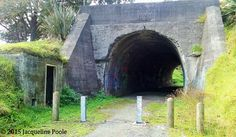 Okaihau Railway Tunnel and Guard House in Two Ponga Park seen from State Highway 1 Guard House, Highway 1, New Zealand, Park, Pictures, Photos, Parks, Grimm