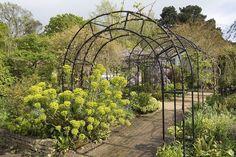 latwerk tuin in het voorjaar: