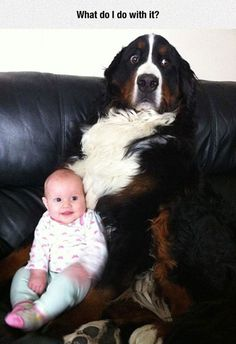 When someone hands me a baby...