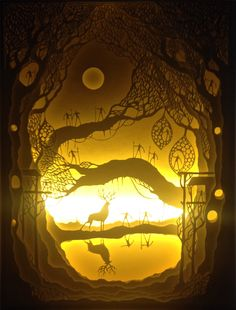 "Hari and Deepti - ""Oh, the places you will go!"" Hand cut paper layered in shadow boxes with LED lights. LOVE. Gorgeous."