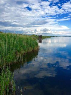Oasi WWF Lago di Burano - Capalbio