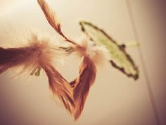 Dream Catcher - Mossy Rock - With Natural Brown Feathers and Moss-Green Nett - Home Decor, Mobile  #photo #photography #art #dream #dreamy #dreamcatcher #catcher #catcer #feather #feathers #love #lovely #white #black #pigeon #awesome #beautiful #bird #fly #birds #feather #feathers #hippie #hipster #love #native #american #dreamer #bohemian #nice #lovely #unique  #tree #trees #nature #natural #wood #forest #rainforest #moss #mossy #green #brown  $19