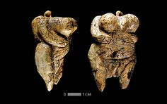 The oldest in the world anthropomorphic figurine.  Age artifact 35000 - 40000 years. Found in Germany.