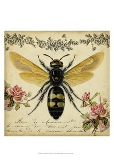 This Vintage Bee Wrapped Canvas by Courtside Market is perfect! Decoupage, Bees Wrap, Deep Box Frames, Painting Prints, Art Prints, Canvas Prints, I Love Bees, Vintage Bee, Bee Art