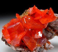 (via Marin Mineral Company - Mixed Minerals)    Wulfenite; Red Cloud Mine, Arizona